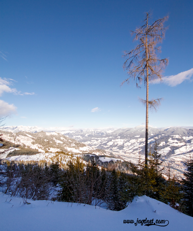 die kühle Winterluft beschert uns oft eine klare Fernsicht