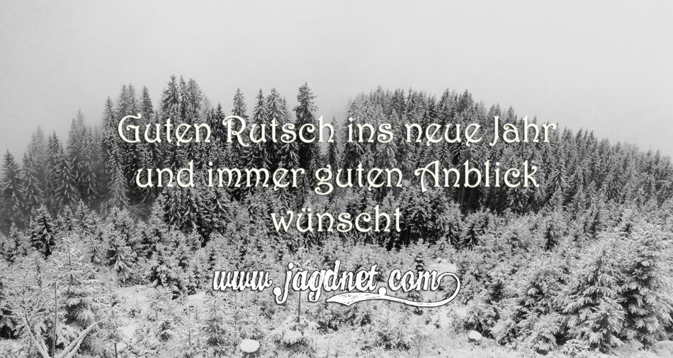 Guten-Rutsch-2015
