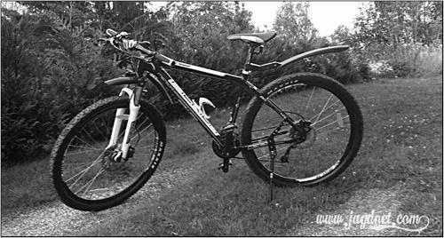 Bild Mountainbike