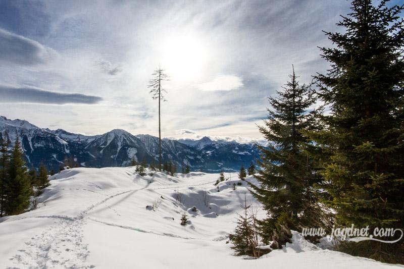 Jagd-Revier_Impressionen-Februar-16-4