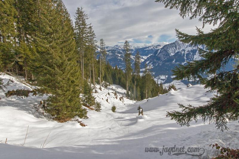 Jagd-Revier_Impressionen-Februar-16-5