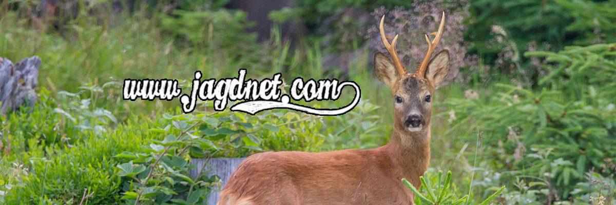 www.jagdnet.com
